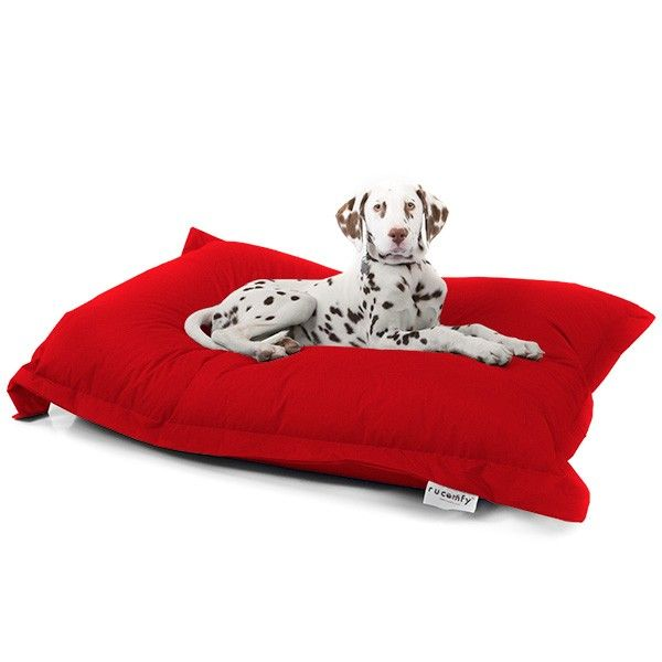 Excellent Indoor Outdoor Dog Bed Squashy Squarbie Pabps2019 Chair Design Images Pabps2019Com
